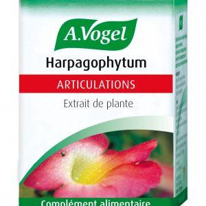 HARPAGOPHYTUM 30 COMPRIMES