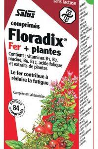 FLORADIX FER 84 COMPRIMES
