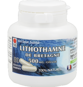 LITHOTHAMNE 80 GEL